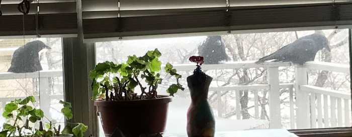 Gifts and Omens from the PolarVortex