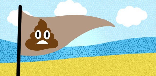 Curious City: Scoop on the Poop at ChicagoBeaches